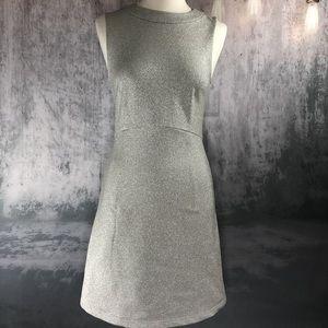 Silver Sparkle Mod Shift Dress